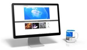 Start własnej firmowej strony internetowej