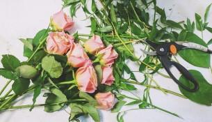 """Analiza SWOT kwiaciarni """"Kokietka"""" - przykład"""